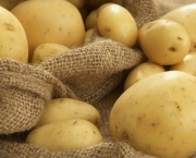 wpid-Potato-Wallpaper-17