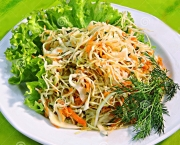 http://www.dreamstime.com/royalty-free-stock-images-cabbage-salad-carrots-image17600219